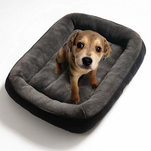 bedsure plush dog bed s/m/l/xl- soft machine washable pet bolster bed for large dogs up to 45 kg BEDSURE Plush Dog Bed Medium Size- Machine Washable Pet Bolster Bed for Large Dogs Up to 20 KG, Grey, 81x58x18cm Bedsure Plush Dog Bed SMLXL Soft Machine Washable Pet Bolster Bed for Large Dogs Up to 45 KG 0 300x300