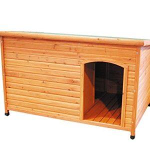 nobby dog kennel Nobby Dog Kennel Caracas Terra Nobby Dog Kennel 0 300x300