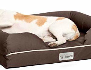 petfusion PetFusion Small Dog Bed with Solid 2.5″ Memory Foam PetFusion 0 300x231