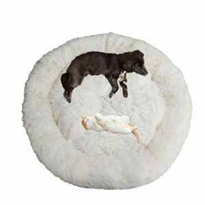 telismei deluxe fluffy extra large dog beds sofa, washable round dog pillow cushion pet bed for large extra large dog Telismei Deluxe Fluffy Extra Large Dog Beds Sofa, Washable Round Dog Pillow Cushion Pet Bed for Large Extra Large Dog Telismei Deluxe Fluffy Extra Large Dog Beds Sofa Washable Round Dog Pillow Cushion Pet Bed for Large Extra Large Dog 0 300x300