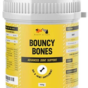 bouncy bones complete joint supplements for dogs - ten key dog vitamins and supplements including glucosamine for improved mobility, pain relief & joint support (up to 175, 1 scoop servings) Buddy & Lola Joint Supplements For Dogs With Glucosamine, Chondroitin, Green Lipped Mussel- 150 Servings, 10 Key Dog… Bouncy Bones Complete Joint Supplements For Dogs Ten Key Dog Vitamins And Supplements Including Glucosamine For Improved Mobility Pain Relief Joint Support Up to 175 1 scoop servings 0 300x300