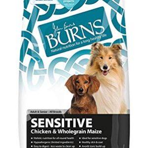 burns dog sensitive Burns Dog Sensitive Burns Dog Sensitive 0 300x300