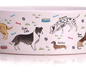 debonair Debonair Dogs Milly Green Bowl, Small Debonair 0 300x251