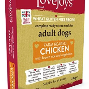 lovejoys adult chicken with rice and vegetables dog food tray, 395 g Lovejoys Complete Wet Adult Dog Food Chicken Rice and Vegetable, 395 g Lovejoys Adult Chicken with Rice and Vegetables Dog Food Tray 395 g 0 300x300