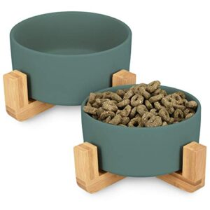 navaris ceramic elevated cat bowls - raised double food and water bowl set for cats and small dogs with wood stands - no spill eco friendly pet bowls Navaris Ceramic Elevated Cat Bowls – Raised Double Food and Water Bowl Set for Cats and Small Dogs with Wood Stands – No… Navaris Ceramic Elevated Cat Bowls Raised Double Food and Water Bowl Set for Cats and Small Dogs with Wood Stands No Spill Eco Friendly Pet Bowls 0 300x300