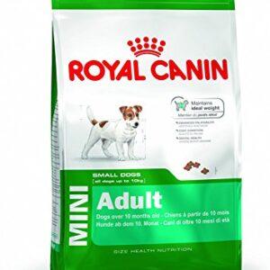 royal canin mini adult dog food 4kg ROYAL CANIN MINI ADULT Dog Food 4kg Royal Canin MINI ADULT Dog Food 4kg 0 300x300