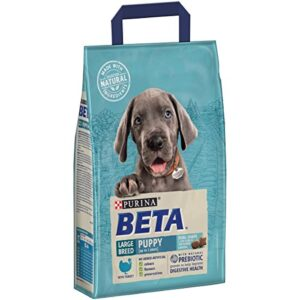 beta puppy large breed with turkey BETA Puppy Large Breed Dry Dog Food Turkey 14 kg BETA Puppy Large Breed with Turkey 0 300x300
