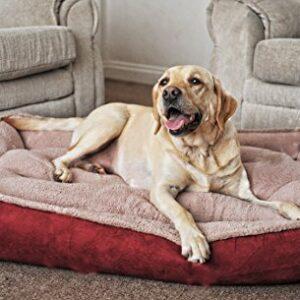 fleece cradle dog bed size extra large Luxury Fleece Cradle Dog Bed Size Extra Large Fleece Cradle Dog Bed Size Extra Large 0 300x300