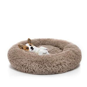ocsoso® dog bed washable plush round pet bed snooze sleeping cozy kitty teddy kennel soft comfortable donut cuddler for cat and small dogs OCSOSO® Dog Bed Washable Plush Round Pet Bed Snooze Sleeping Cozy Kitty Teddy Kennel Soft Comfortable Donut Cuddler For… OCSOSO Dog Bed Washable Plush Round Pet Bed Snooze Sleeping Cozy Kitty Teddy Kennel Soft Comfortable Donut Cuddler For Cat And Small Dogs 0 300x300
