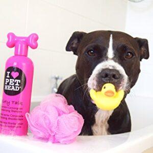 pet head shampoo Furtastic Crème Rinse, 16.1oz Blueberry Muffin Pet Head Lifes an Itch Skin Soothing Shampoo 475 ml 0 1 300x300
