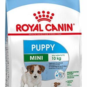 royal canin mini puppy dry dog food - 800 gm Royal Canin Mini Puppy Dry Dog Food – 800 gm Royal Canin Mini Puppy Dry Dog Food 800 gm 0 300x300