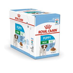 royal canin mini puppy / junior wet dog food 24 pack 85g each for young and growing small breed dogs up to 10 months old Royal Canin Mini Puppy / Junior Wet Dog Food 24 Pack 85g Each For Young And Growing Small Breed Dogs Up To 10 Months Old Royal Canin Mini Puppy Junior Wet Dog Food 24 Pack 85g Each For Young And Growing Small Breed Dogs Up To 10 Months Old 0 300x300